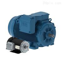 WEG万高电机 低压高压电机